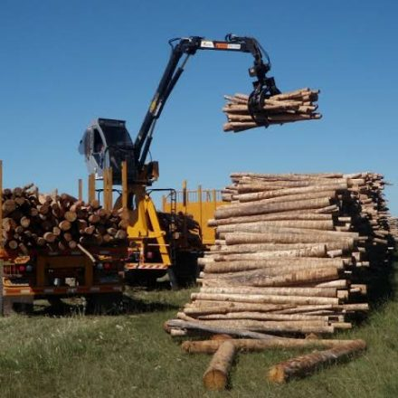 Different Log Loaders and Benefits They Offer