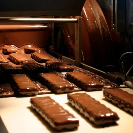 What Are The Differences Between Chocolate Enrobing and Moulding?